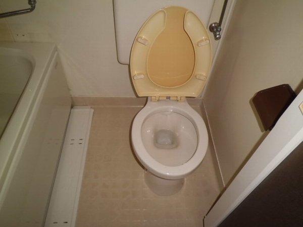 Y・D晴嵐荘 201号室のトイレ