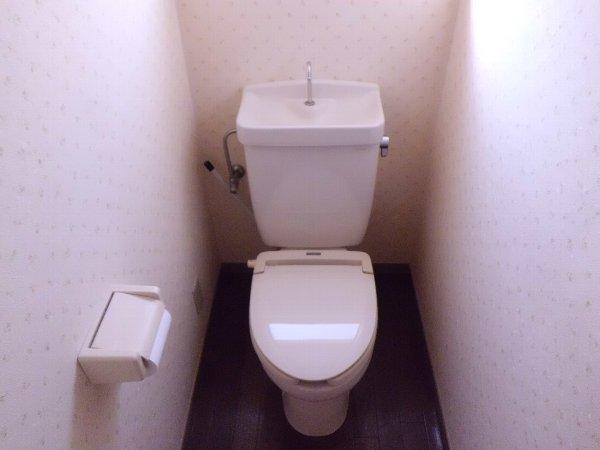 和光ハイツD 102号室のトイレ