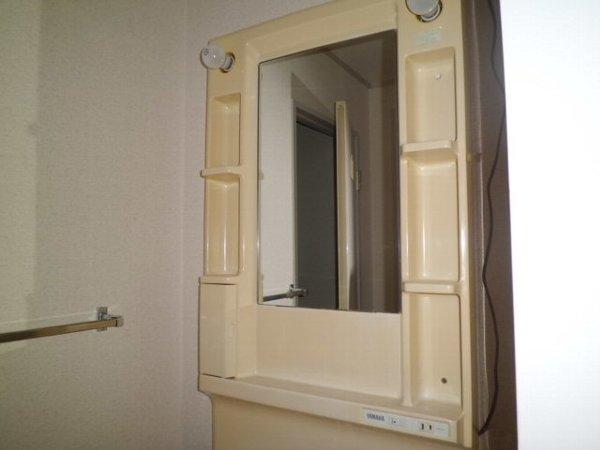 野島パークハイツ 202号室の洗面所