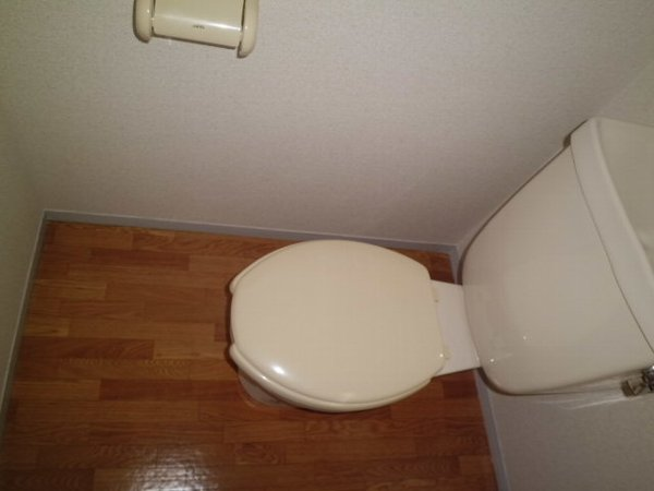 野島パークハイツ 202号室のトイレ