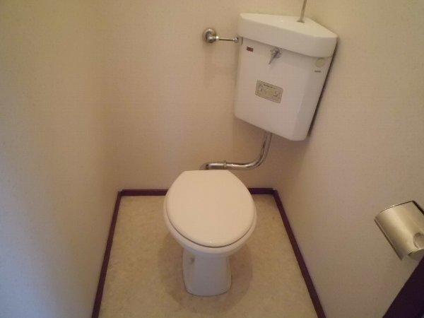 大井ハイム 201号室のトイレ
