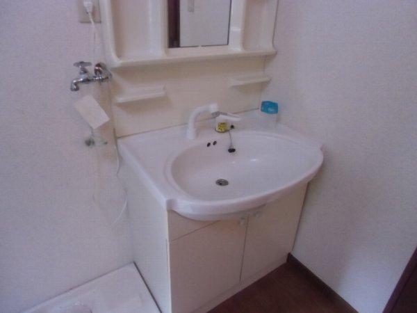 サウスM 202号室の洗面所
