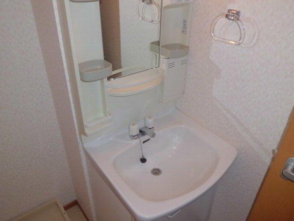 第一ダイソウハウス 201号室の洗面所