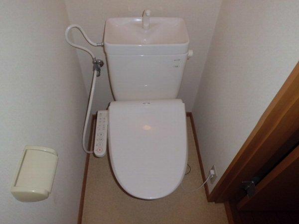 第一ダイソウハウス 201号室のトイレ
