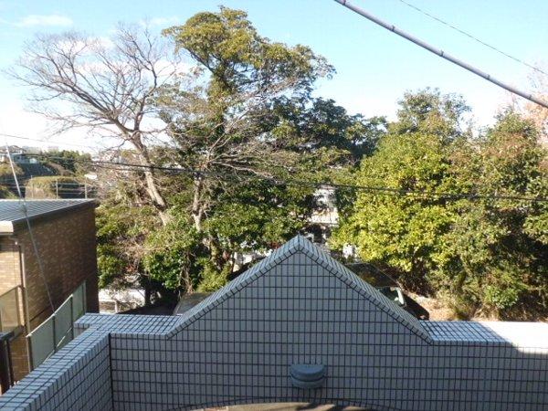 梅林の丘マンション 208号室の景色