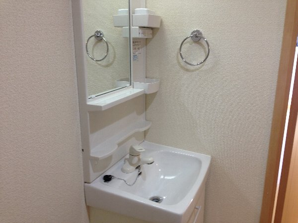 ビューレ金沢八景 101号室の洗面所