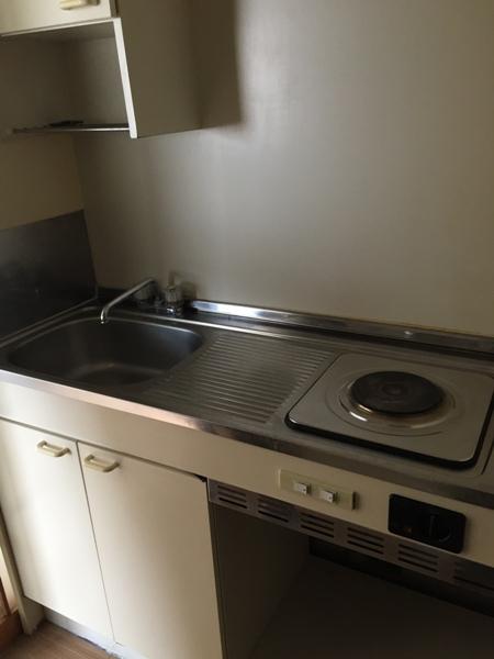 スカイハイツオダ 5D号室のキッチン