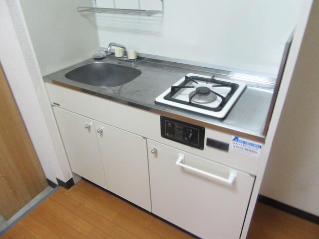 ブルースカイ 205号室のキッチン