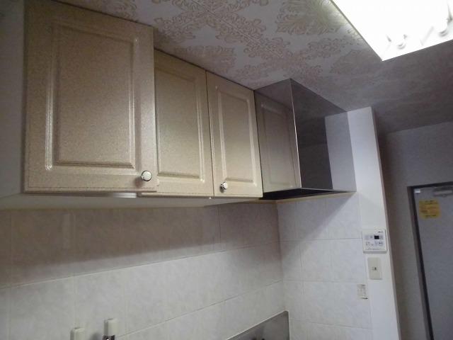 カーサ・パルマ 101号室のキッチン