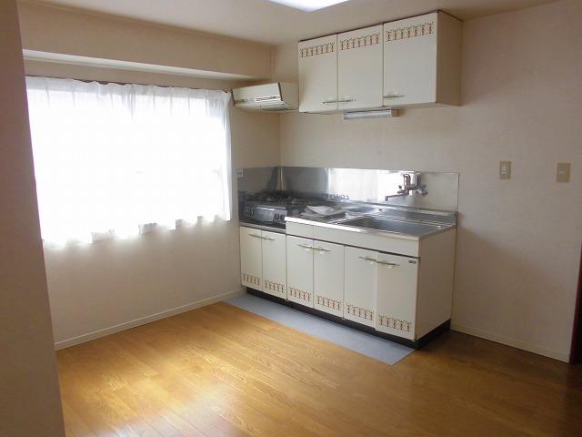 クリスタル童夢 202号室のキッチン
