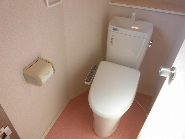 クリスタル童夢 202号室のトイレ