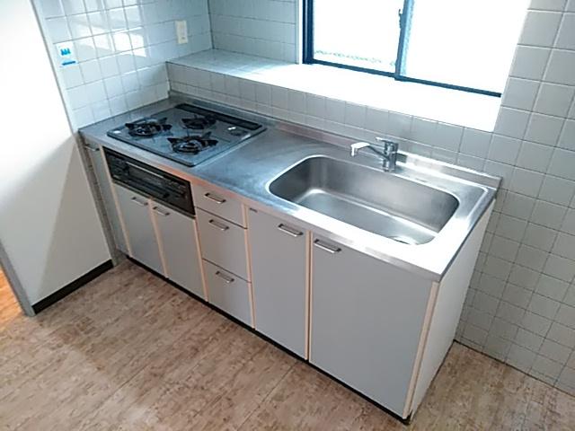 ロイヤルハイツ西沢 203号室のキッチン