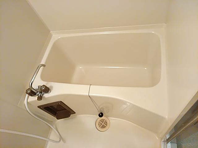 ロイヤルハイツ西沢 203号室の風呂