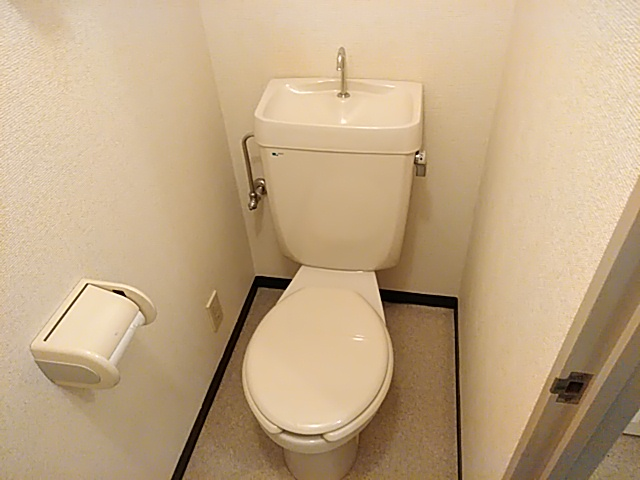 ロイヤルハイツ西沢 203号室のトイレ