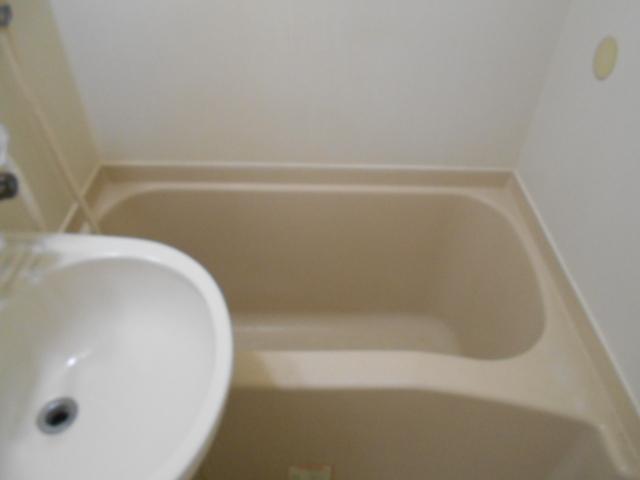 フルール御池 301号室の風呂