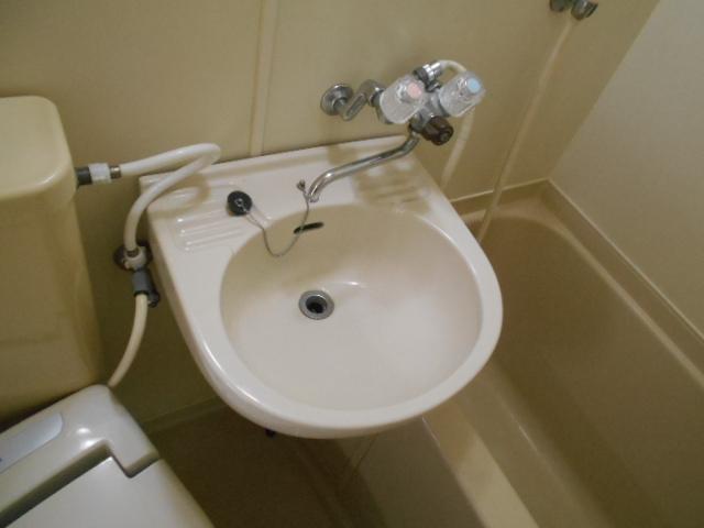 フルール御池 301号室の洗面所