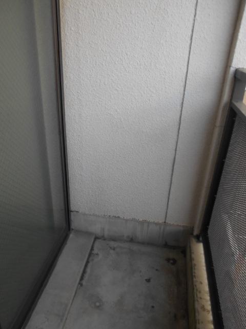 サンフローラ 501号室のバルコニー