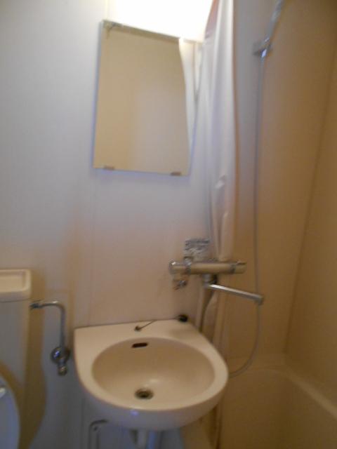 サンフローラ 501号室の洗面所