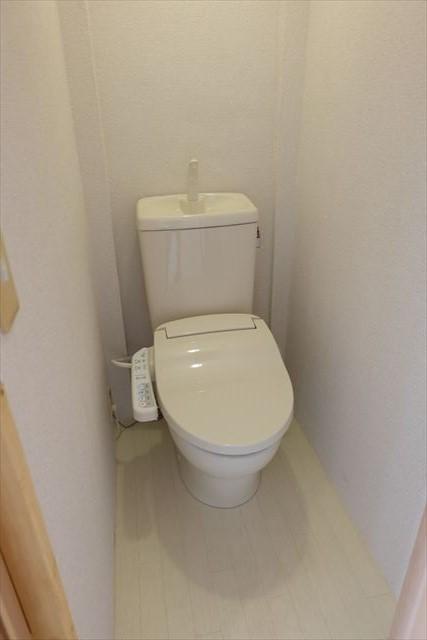 安武マンション駅東 501号室のトイレ