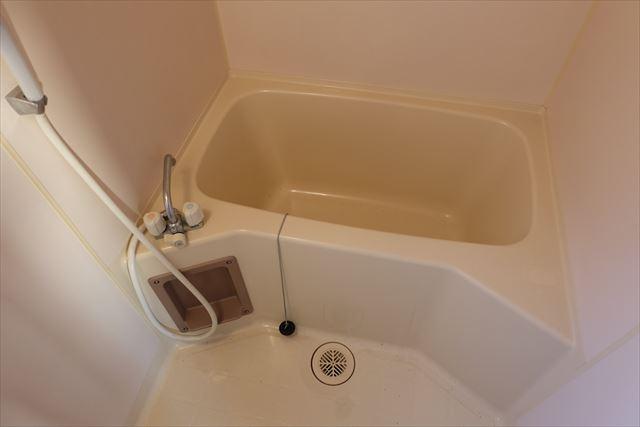 ロイヤルパレスⅡ 101号室の風呂