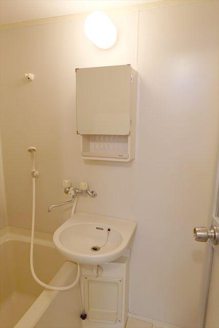 ネモトハイツ 202号室の洗面所