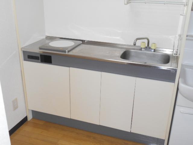 メゾン・ミヤマ 301号室のキッチン