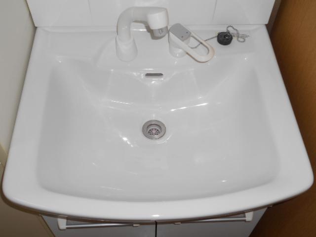 メゾン・ミヤマ 301号室の洗面所