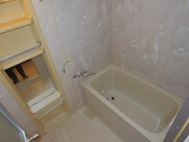 ネオシティ岡崎参番館 318号室の風呂