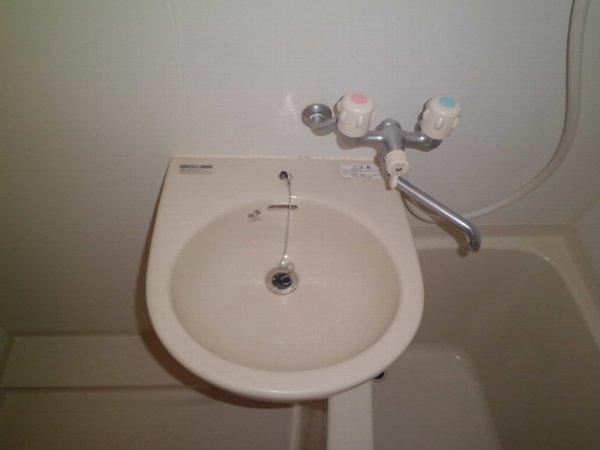 アリスガーデン N201号室の洗面所