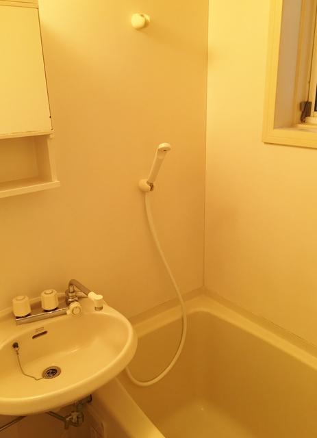クローカス・コスギ 102号室の洗面所