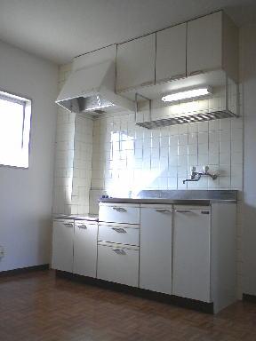 ピースファルハイツ 02050号室のキッチン