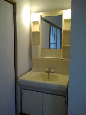 ピースファルハイツ 02050号室の洗面所