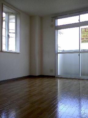 ピースファルハイツ 02050号室の居室