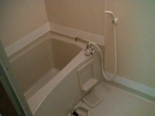 シティハイツ板橋Ⅲ 01010号室の風呂