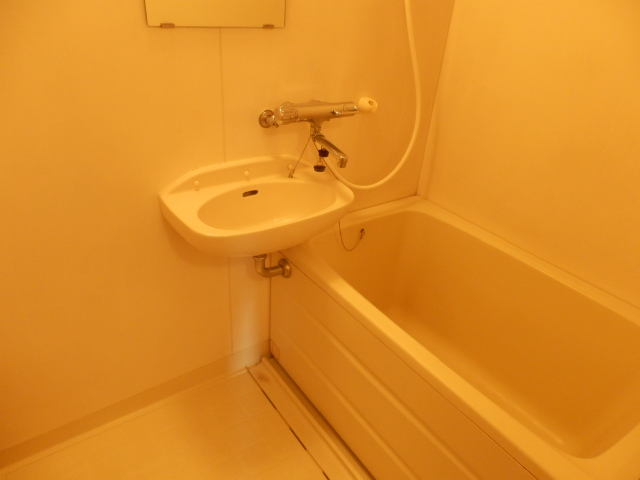 新井ハイツⅡ 02040号室の風呂