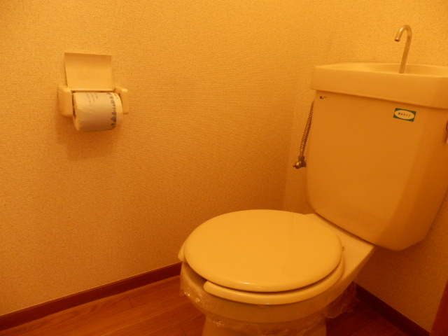 新井ハイツⅡ 02040号室のトイレ