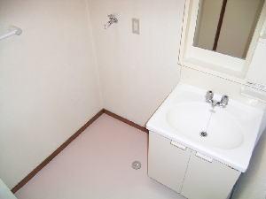 マンションローレル 03010号室の洗面所