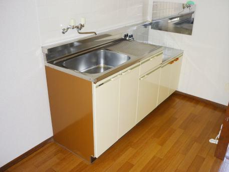エルディム西A 01010号室のキッチン