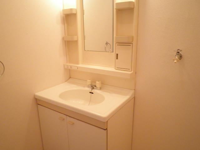 レインボウT・K 02040号室の洗面所