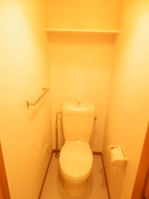 エスポワ-ルいずみ野 503号室のトイレ