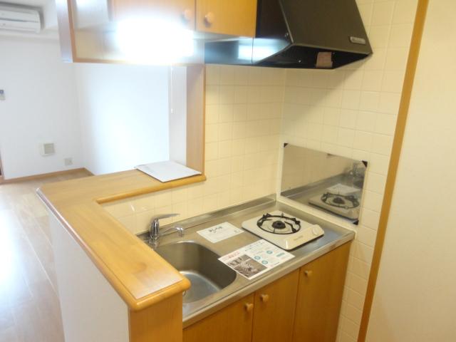 フィオーレ・エコー 213号室のキッチン