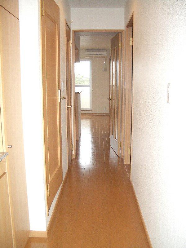 アラシード 03010号室の玄関
