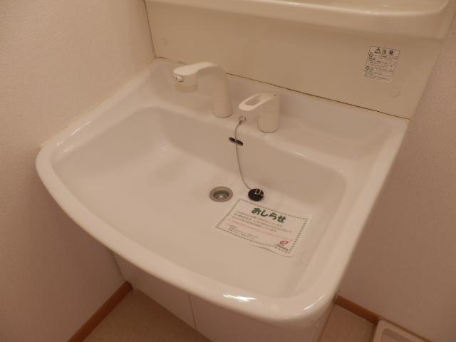 グリーンストリーム 101号室の洗面所