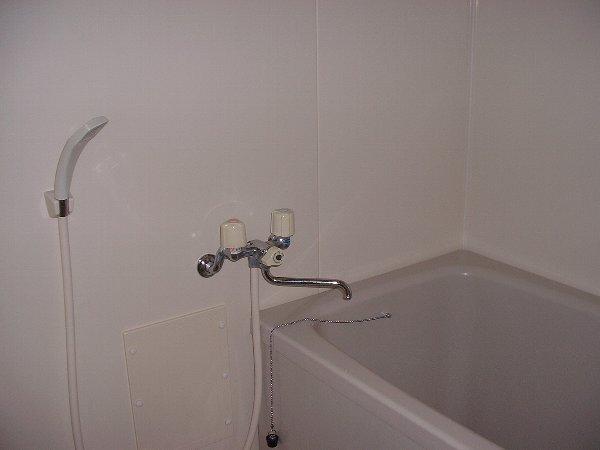 グリーンパーク 02020号室の風呂