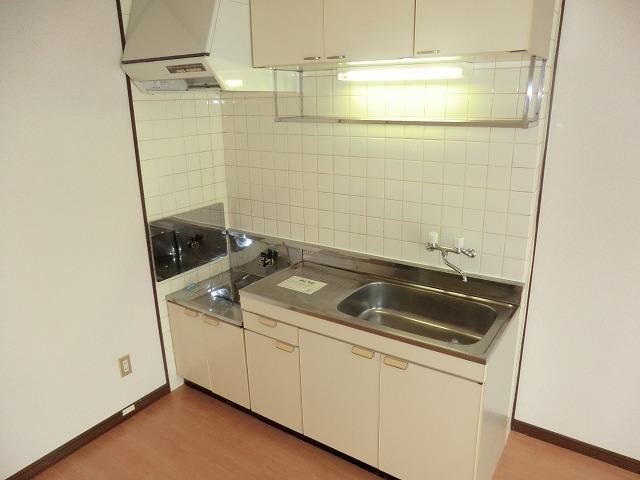 サウスウィンド 202号室のキッチン
