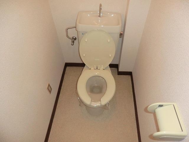サウスウィンド 202号室のトイレ
