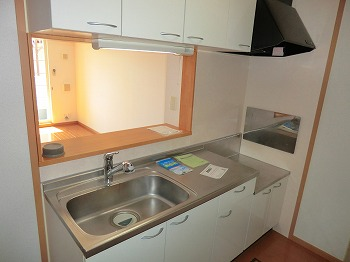 ベルメゾン壱番館 103号室のキッチン