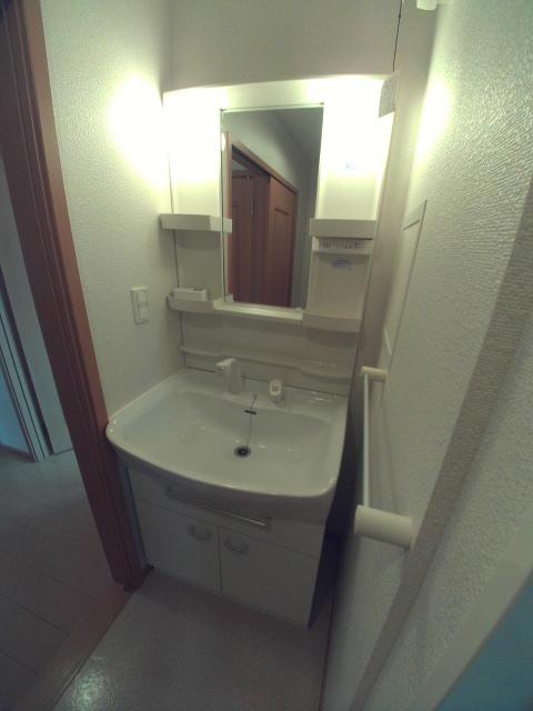 パティオ・ソレアードⅡ 02010号室の洗面所
