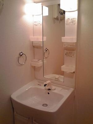 ロイヤルランド泉 303号室の洗面所