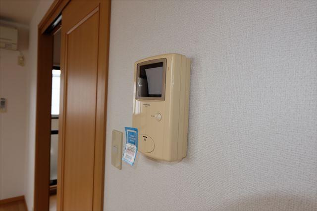 エレガンシア ルーナ 02010号室のセキュリティ